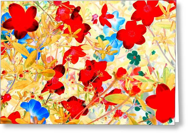 Greeting Card featuring the photograph Red Wild Flowers by Marianne Dow