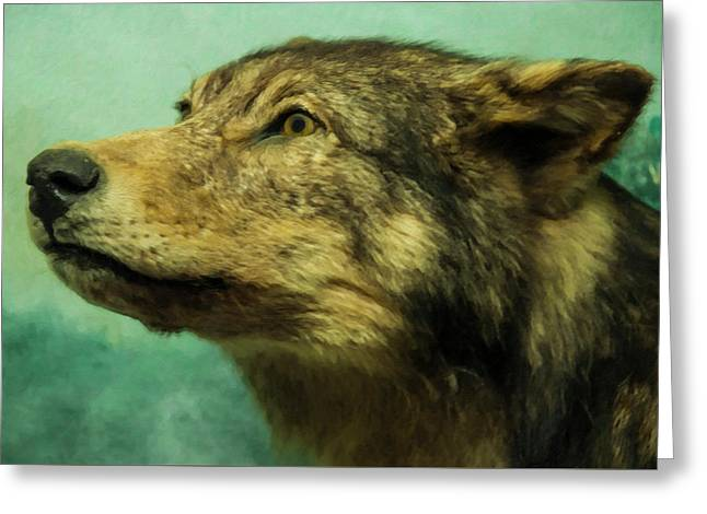 Greeting Card featuring the digital art Red Wolf Digital Art by Chris Flees