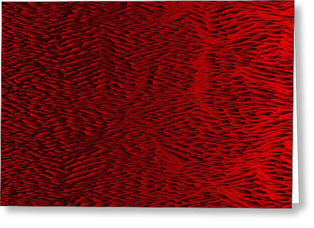 Red.428 Greeting Card by Gareth Lewis