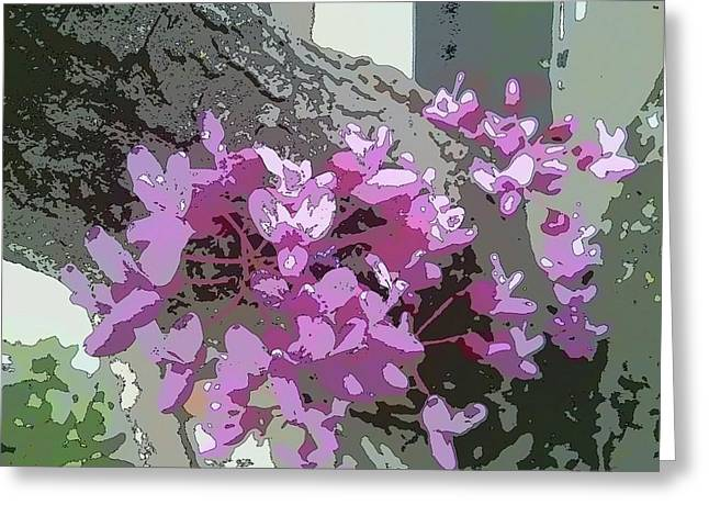 Redbud Tree Greeting Card