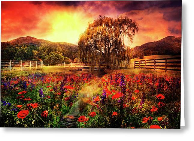 Reds Under The Sun Greeting Card by Debra and Dave Vanderlaan