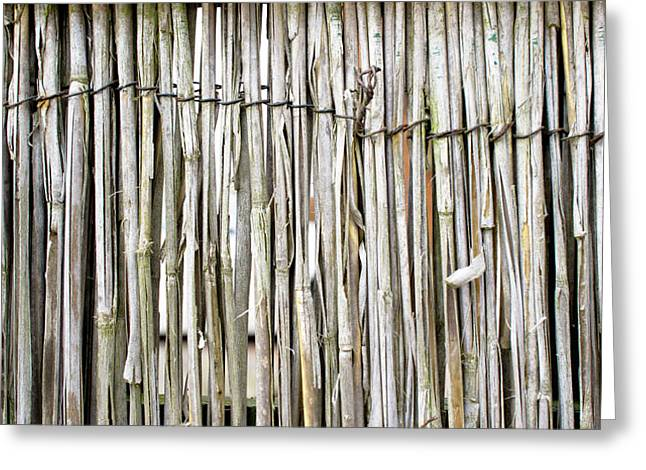 Reed Background Greeting Card by Tom Gowanlock