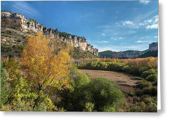 Reed Beds At Una Lake In Autumn, Serrania De Cuenca, Spain Greeting Card