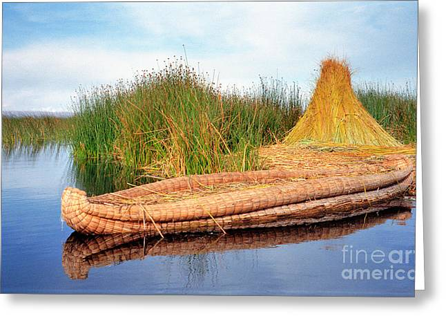 Greeting Card featuring the photograph Reed Reflection by Nigel Fletcher-Jones
