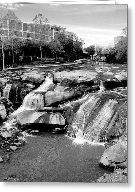 Greeting Card featuring the photograph Reedy River by Corinne Rhode