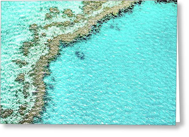 Reef Textures Greeting Card