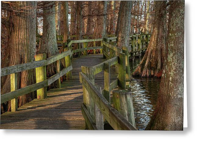 Greeting Card featuring the photograph Reelfoot Lake 001 by Lance Vaughn