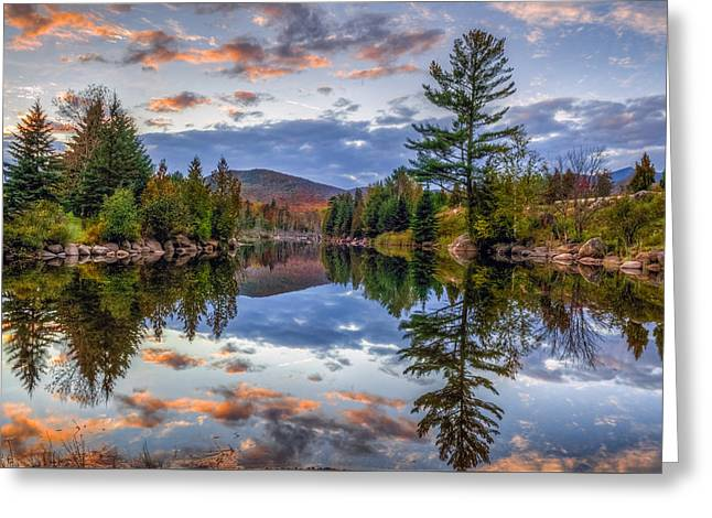Reflect Greeting Card by Mark Papke