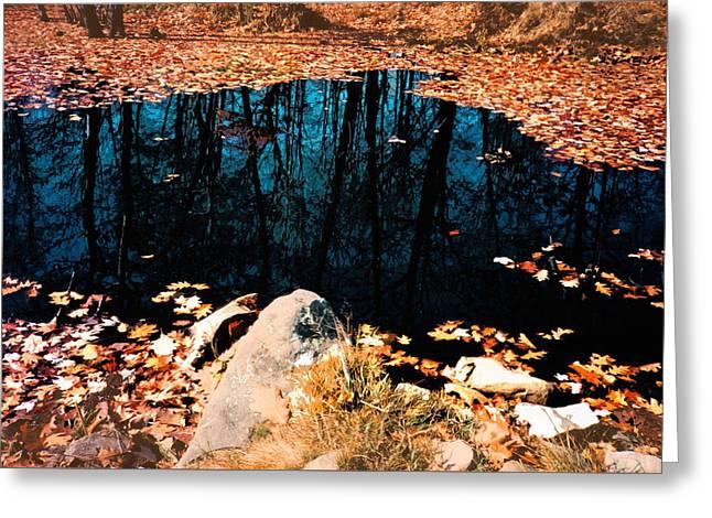 Reflect Pond Greeting Card