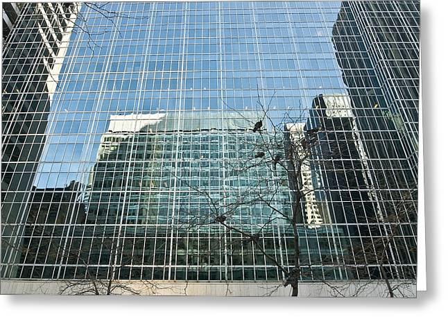 Reflected Buildings Greeting Card by Svetlana Sewell