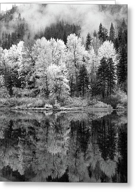 Reflected Glories Greeting Card
