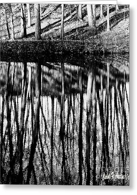 Reflected Landscape Patterns Greeting Card