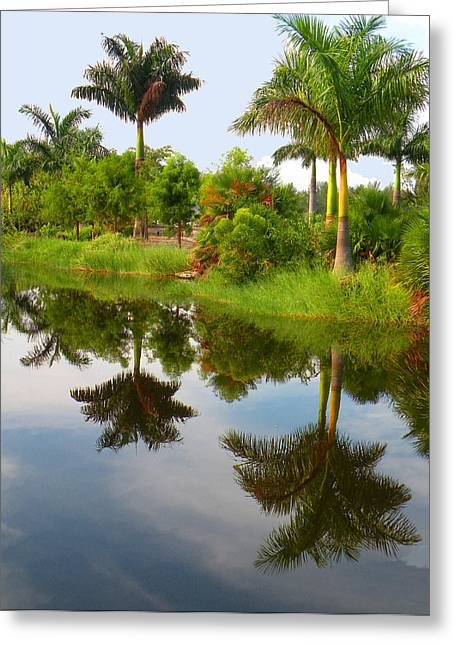 Reflected Palms Greeting Card by Rosalie Scanlon
