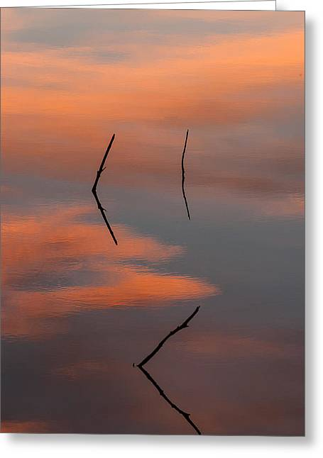 Reflected Sunrise Greeting Card by Monte Stevens