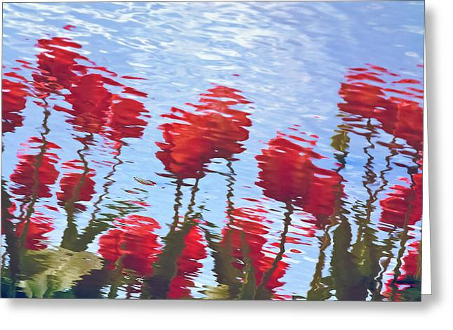 Greeting Card featuring the photograph Reflected Tulips by Tom Vaughan