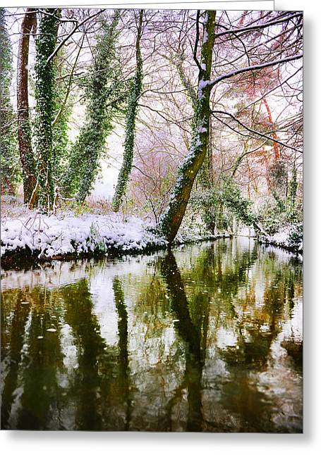 Reflected Winter Greeting Card