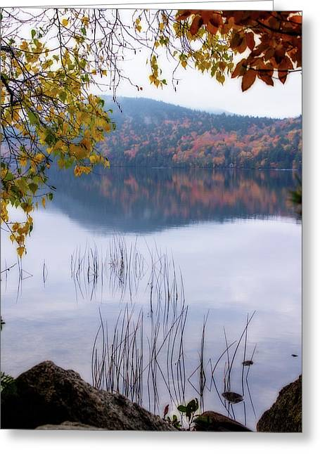 Reflecting Autumn Greeting Card by Terry Davis