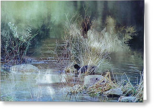 Reflecting On A Misty Morning Greeting Card
