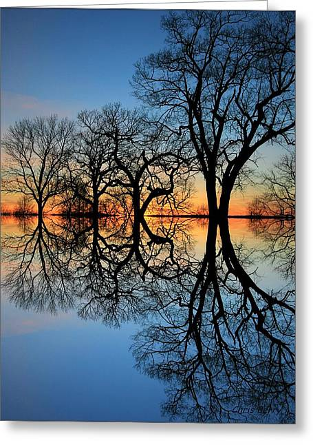 Reflecting On Tonight Greeting Card by Chris Berry