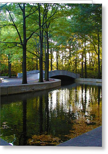 Reflecting Pool Roosevelt Park Greeting Card
