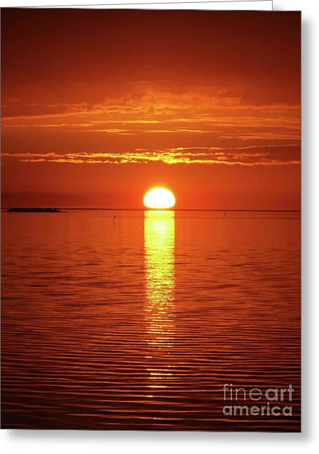 Reflecting Sunset Greeting Card by D Hackett