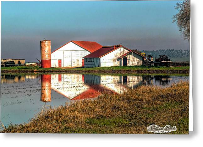 Greeting Card featuring the photograph Reflection Barn  by William Havle