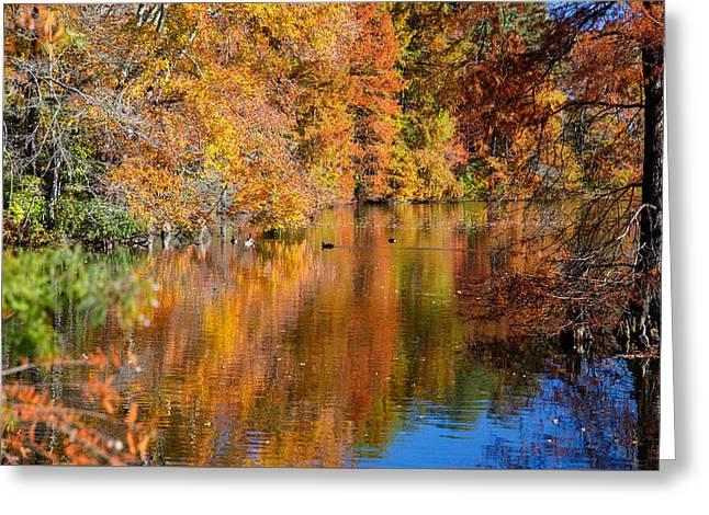 Reflected Fall Foliage Greeting Card