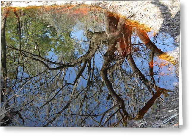 Reflection In A Dark Pool Greeting Card