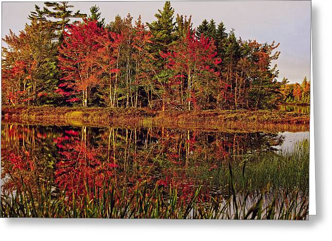 Greeting Card featuring the photograph Reflection Island by Kathleen Sartoris