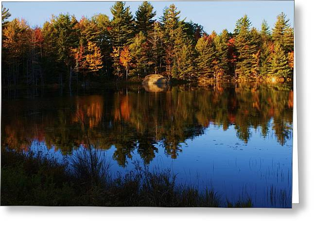 Greeting Card featuring the photograph Reflection by Lois Lepisto