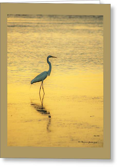 Reflection Greeting Card by Marvin Spates