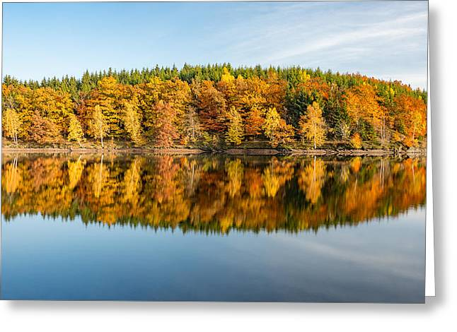 Reflection Of Autumn Greeting Card by Andreas Levi