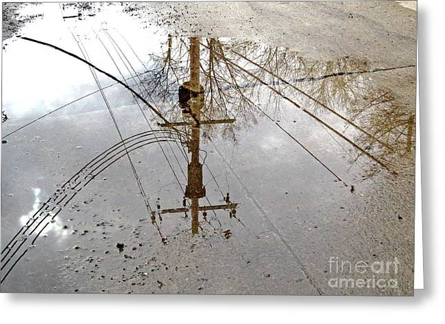 Puddle Reflections  Greeting Card by Sandra Church