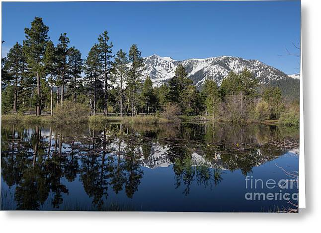 Reflection Of Mount Tallac Greeting Card by Webb Canepa