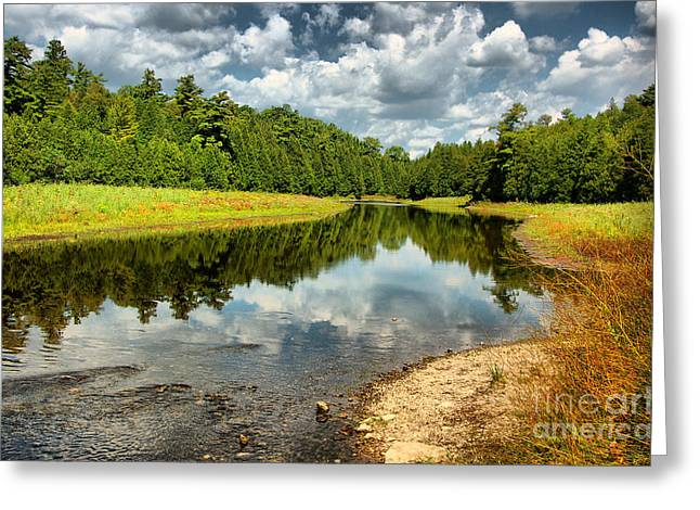 Reflection Of Nature Greeting Card