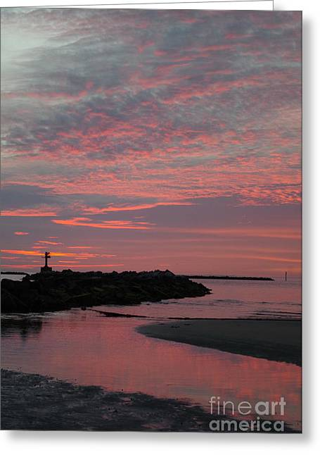 Reflection Of Pink Greeting Card by Tannis Baldwin