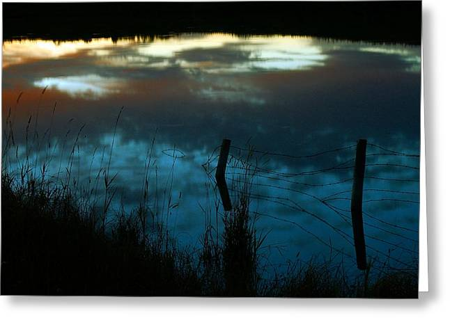 Reflection Of The Sky In A Pond Greeting Card by Mario Brenes Simon