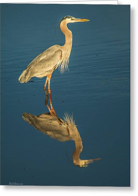 Reflection On Blue Greeting Card by Bill Roberts