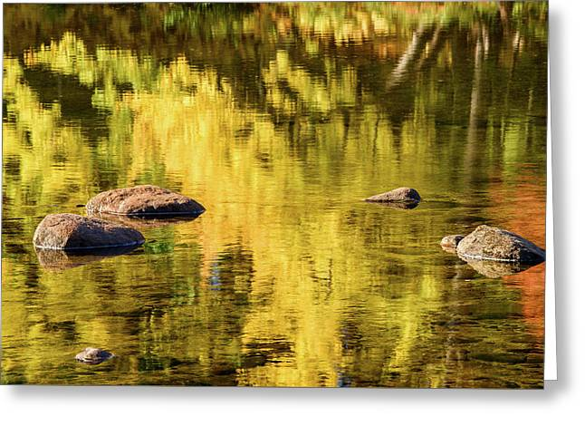 Reflection On Saco River Greeting Card by Michael Blanchette