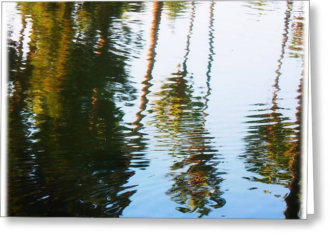 Reflection Greeting Card by Sarah Vandenbusch