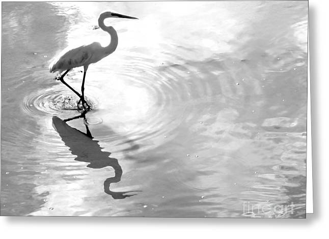 Reflections And Ripples Greeting Card by Christy Ricafrente