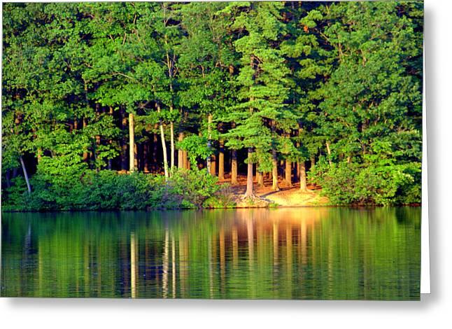 Reflections At Farrington Lake 6 Greeting Card