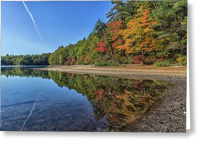 Reflections At Walden Pond Greeting Card by Brian MacLean
