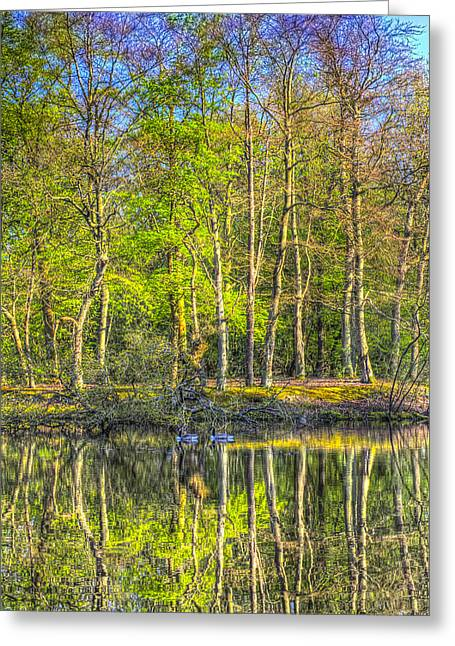 Reflections From The Pond Greeting Card
