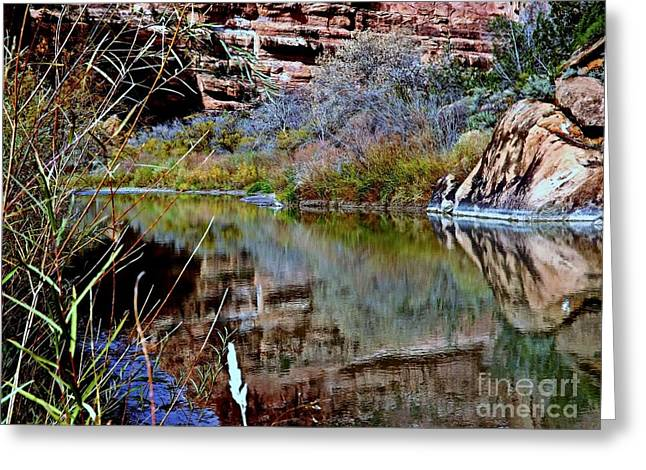 Reflections In Desert River Canyon Greeting Card by Annie Gibbons
