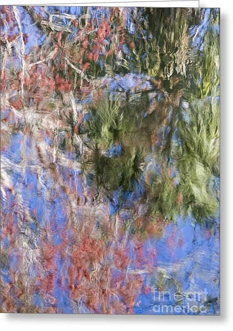 Reflections In The Hillsborough River Greeting Card by John Arnaldi