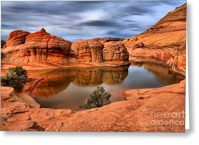 Reflections In The Red Rock Desert Greeting Card