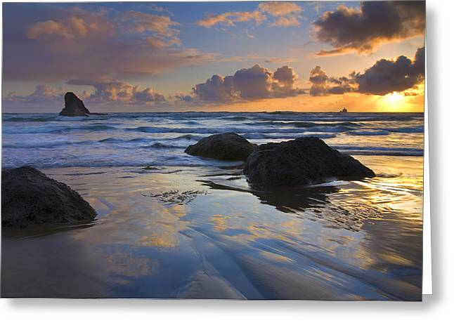 Reflections In The Sand Greeting Card by Mike  Dawson