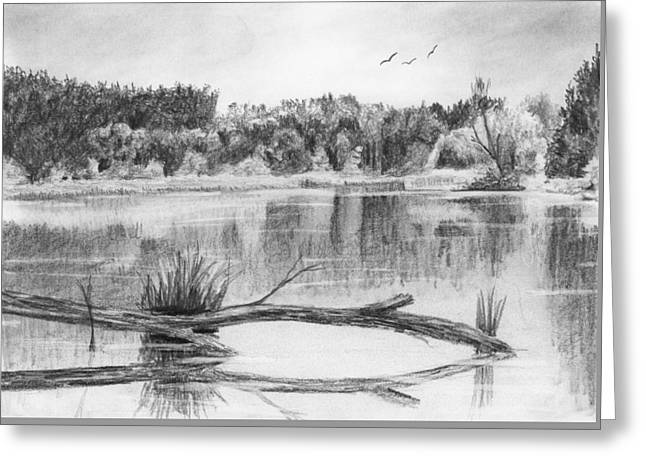 Reflections In The Water Greeting Card by Nolan Clark