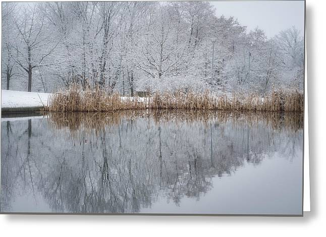 Reflections In Winter Greeting Card by Miguel Winterpacht